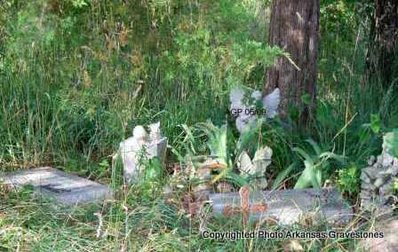 * DUCHARME, *OVERVIEW - Scott County, Arkansas | *OVERVIEW * DUCHARME - Arkansas Gravestone Photos