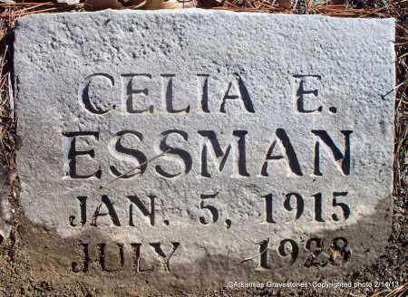 ESSMAN, CELIA E - Scott County, Arkansas | CELIA E ESSMAN - Arkansas Gravestone Photos