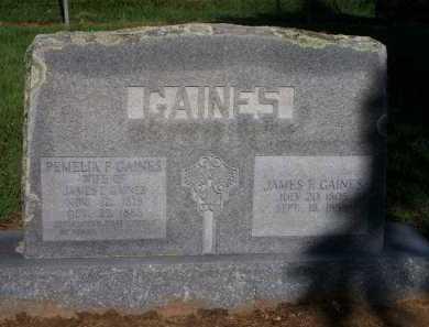 GAINES, PEMELIA F - Scott County, Arkansas | PEMELIA F GAINES - Arkansas Gravestone Photos