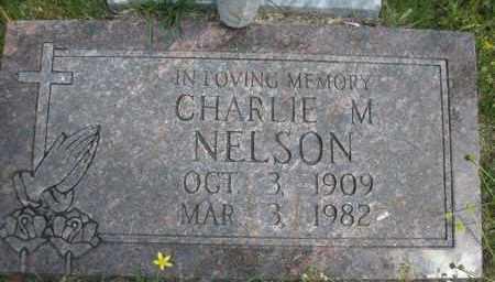 NELSON, CHARLIE M - Scott County, Arkansas | CHARLIE M NELSON - Arkansas Gravestone Photos