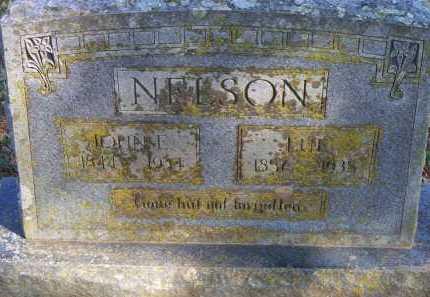 NELSON, JOHN E - Scott County, Arkansas | JOHN E NELSON - Arkansas Gravestone Photos