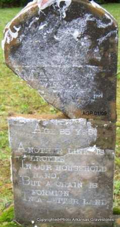 WEBB, MARY A - Scott County, Arkansas | MARY A WEBB - Arkansas Gravestone Photos