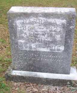 WAGNER, EMILY - Scott County, Arkansas | EMILY WAGNER - Arkansas Gravestone Photos