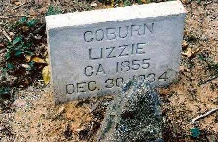 COBURN, ALMEDA ELIZABETH - Searcy County, Arkansas | ALMEDA ELIZABETH COBURN - Arkansas Gravestone Photos