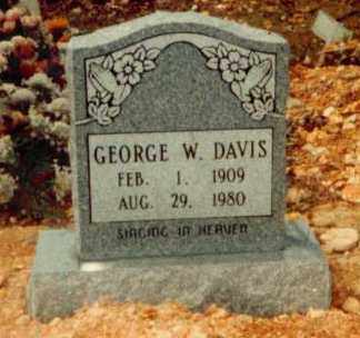 DAVIS, GEORGE W. - Searcy County, Arkansas | GEORGE W. DAVIS - Arkansas Gravestone Photos