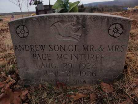 MCINTURFF, ANDREW - Searcy County, Arkansas | ANDREW MCINTURFF - Arkansas Gravestone Photos
