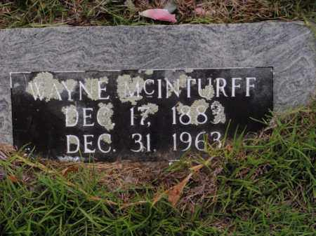 MCINTURFF, WAYNE - Searcy County, Arkansas | WAYNE MCINTURFF - Arkansas Gravestone Photos