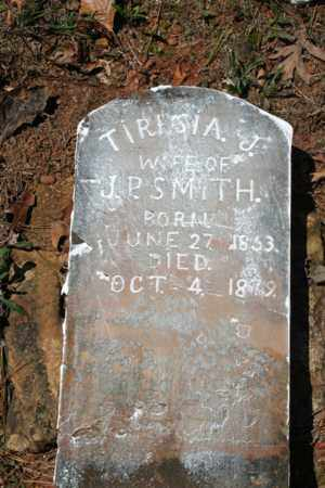 SMITH, TIRESIA J. - Searcy County, Arkansas | TIRESIA J. SMITH - Arkansas Gravestone Photos