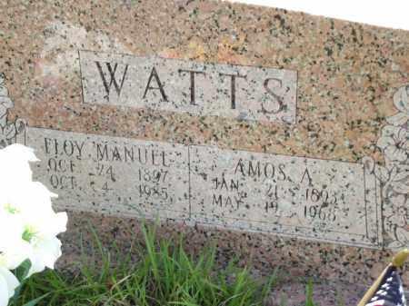 WATTS, FLOY MANUEL - Searcy County, Arkansas | FLOY MANUEL WATTS - Arkansas Gravestone Photos