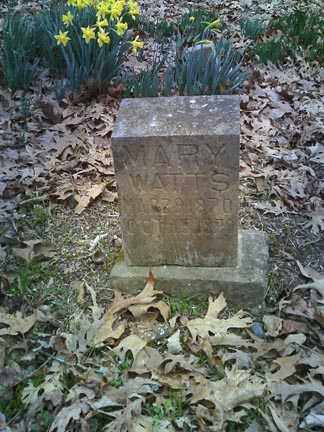 WATTS, MARY - Searcy County, Arkansas | MARY WATTS - Arkansas Gravestone Photos