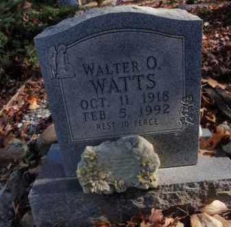 WATTS, WALTER O - Searcy County, Arkansas   WALTER O WATTS - Arkansas Gravestone Photos