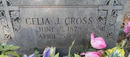 CROSS, CELIA JOSEPHINE - Sebastian County, Arkansas   CELIA JOSEPHINE CROSS - Arkansas Gravestone Photos