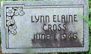 CROSS, LYNN ELAINE - Sebastian County, Arkansas | LYNN ELAINE CROSS - Arkansas Gravestone Photos