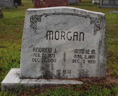 MORGAN, MINNIE - Sebastian County, Arkansas | MINNIE MORGAN - Arkansas Gravestone Photos