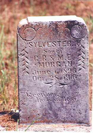 MORGAN, SYLVESTER J - Sebastian County, Arkansas | SYLVESTER J MORGAN - Arkansas Gravestone Photos