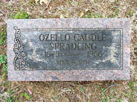 SPRADLING, OZELLO - Sebastian County, Arkansas | OZELLO SPRADLING - Arkansas Gravestone Photos