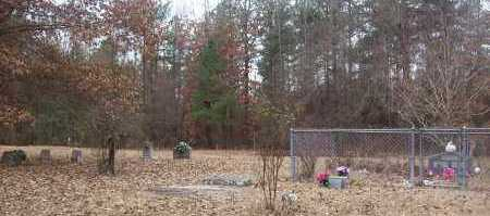 *WOFFORD'S CHAPEL CEMETERY OVE,  - Sevier County, Arkansas |  *WOFFORD'S CHAPEL CEMETERY OVE - Arkansas Gravestone Photos