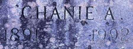 CHRISTIAN, CHANIE A (CLOSEUP) - Sevier County, Arkansas | CHANIE A (CLOSEUP) CHRISTIAN - Arkansas Gravestone Photos