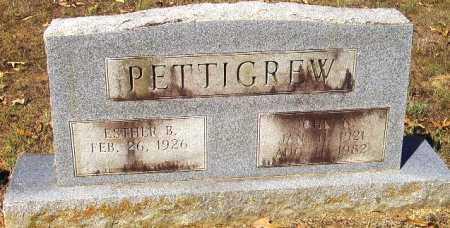 PETTIGREW, JOHN N - Sevier County, Arkansas | JOHN N PETTIGREW - Arkansas Gravestone Photos