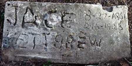 PETTIGREW, JACE - Sevier County, Arkansas   JACE PETTIGREW - Arkansas Gravestone Photos