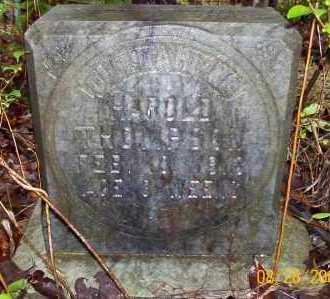 THOMPSON, HAROLD - Sevier County, Arkansas | HAROLD THOMPSON - Arkansas Gravestone Photos