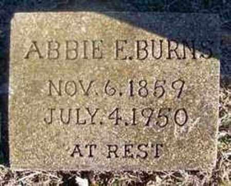 BURNS, ABBIE E - Sharp County, Arkansas | ABBIE E BURNS - Arkansas Gravestone Photos