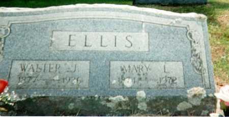 ELLIS, MARY L - Sharp County, Arkansas | MARY L ELLIS - Arkansas Gravestone Photos