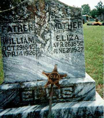 ELLIS (VETERAN CSA), WILLIAM - Sharp County, Arkansas | WILLIAM ELLIS (VETERAN CSA) - Arkansas Gravestone Photos