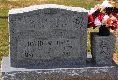 HAYS, DAVID W. - Sharp County, Arkansas | DAVID W. HAYS - Arkansas Gravestone Photos