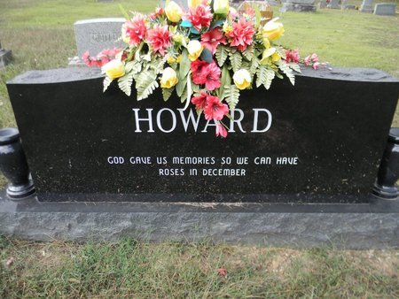 GARNER HOWARD, JANICE ANITA - Sharp County, Arkansas | JANICE ANITA GARNER HOWARD - Arkansas Gravestone Photos