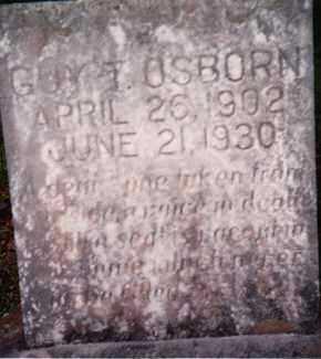 OSBORN, GUY T. - Sharp County, Arkansas | GUY T. OSBORN - Arkansas Gravestone Photos