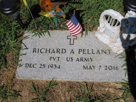 PELLANT (VETERAN), RICHARD A - Sharp County, Arkansas | RICHARD A PELLANT (VETERAN) - Arkansas Gravestone Photos