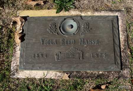 REED, VIOLA - Sharp County, Arkansas | VIOLA REED - Arkansas Gravestone Photos