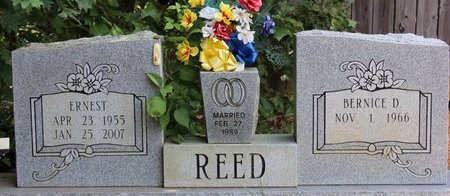 REED, ERNEST - Sharp County, Arkansas | ERNEST REED - Arkansas Gravestone Photos