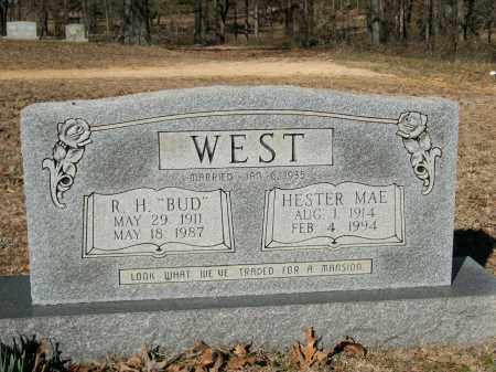 WEST, HESTER - Sharp County, Arkansas | HESTER WEST - Arkansas Gravestone Photos