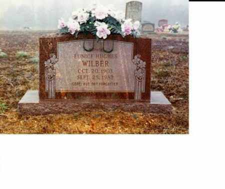 WILBER, EUNICE - Sharp County, Arkansas   EUNICE WILBER - Arkansas Gravestone Photos