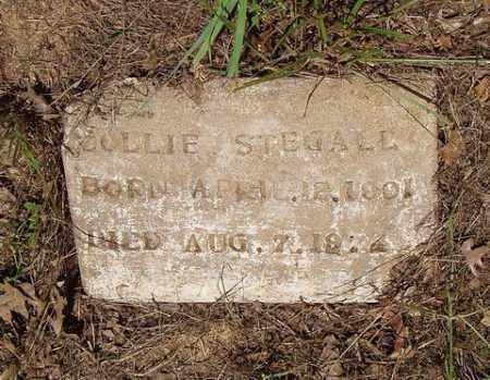 STEGALL, DOLLIE - St. Francis County, Arkansas   DOLLIE STEGALL - Arkansas Gravestone Photos