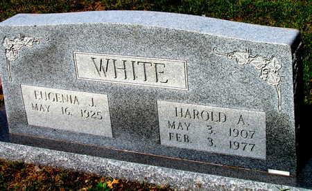 WHITE, HAROLD A - St. Francis County, Arkansas | HAROLD A WHITE - Arkansas Gravestone Photos