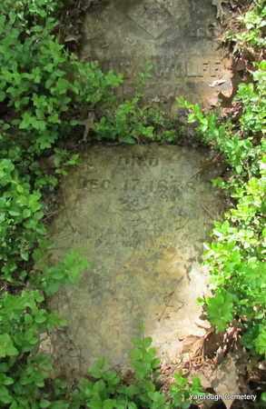 WOLFF, JOE A - St. Francis County, Arkansas   JOE A WOLFF - Arkansas Gravestone Photos