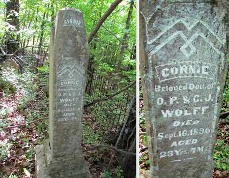 WOLFF, COORNIE - St. Francis County, Arkansas | COORNIE WOLFF - Arkansas Gravestone Photos