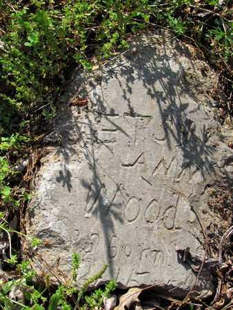 WOODS, BETSY ANN - St. Francis County, Arkansas | BETSY ANN WOODS - Arkansas Gravestone Photos