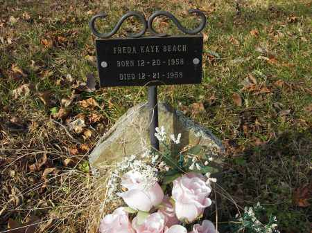 BEACH, FREDA - Stone County, Arkansas | FREDA BEACH - Arkansas Gravestone Photos