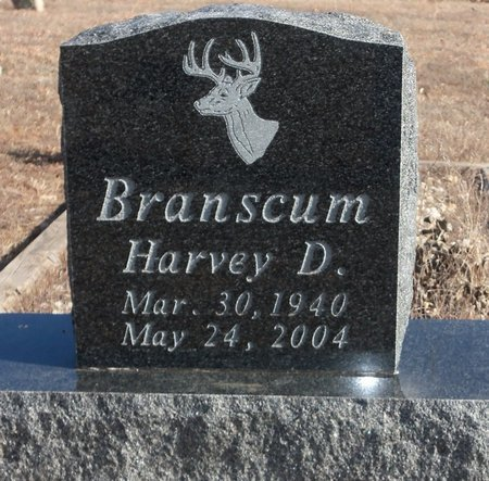 BRANSCUM, HARVEY D. - Stone County, Arkansas   HARVEY D. BRANSCUM - Arkansas Gravestone Photos