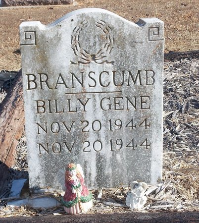 BRANSCUMB, BILLY GENE - Stone County, Arkansas | BILLY GENE BRANSCUMB - Arkansas Gravestone Photos