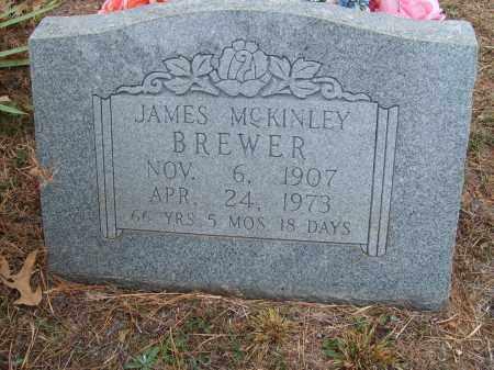 BREWER, JAMES MCKINLEY - Stone County, Arkansas | JAMES MCKINLEY BREWER - Arkansas Gravestone Photos