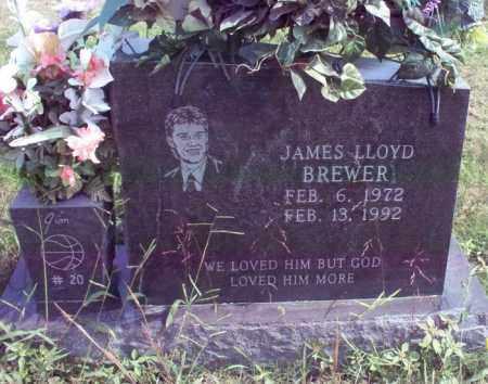 BREWER, JAMES LLOYD - Stone County, Arkansas | JAMES LLOYD BREWER - Arkansas Gravestone Photos
