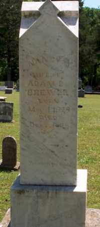 BREWER, NANCY - Stone County, Arkansas | NANCY BREWER - Arkansas Gravestone Photos