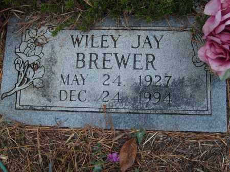 BREWER, WILEY JAY - Stone County, Arkansas | WILEY JAY BREWER - Arkansas Gravestone Photos