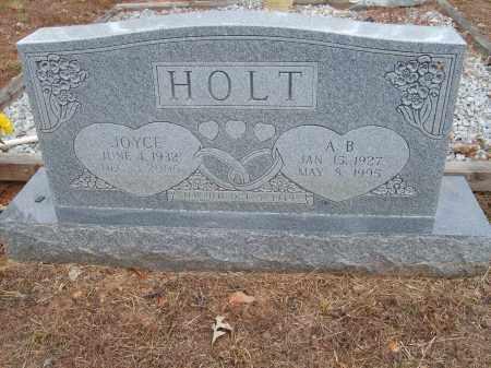 HOLT, A.B. - Stone County, Arkansas | A.B. HOLT - Arkansas Gravestone Photos