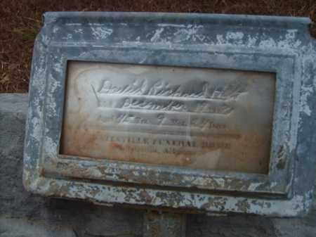 HOLT, DAVID RICHARD - Stone County, Arkansas | DAVID RICHARD HOLT - Arkansas Gravestone Photos
